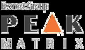 Everest Group - Peak Matrix